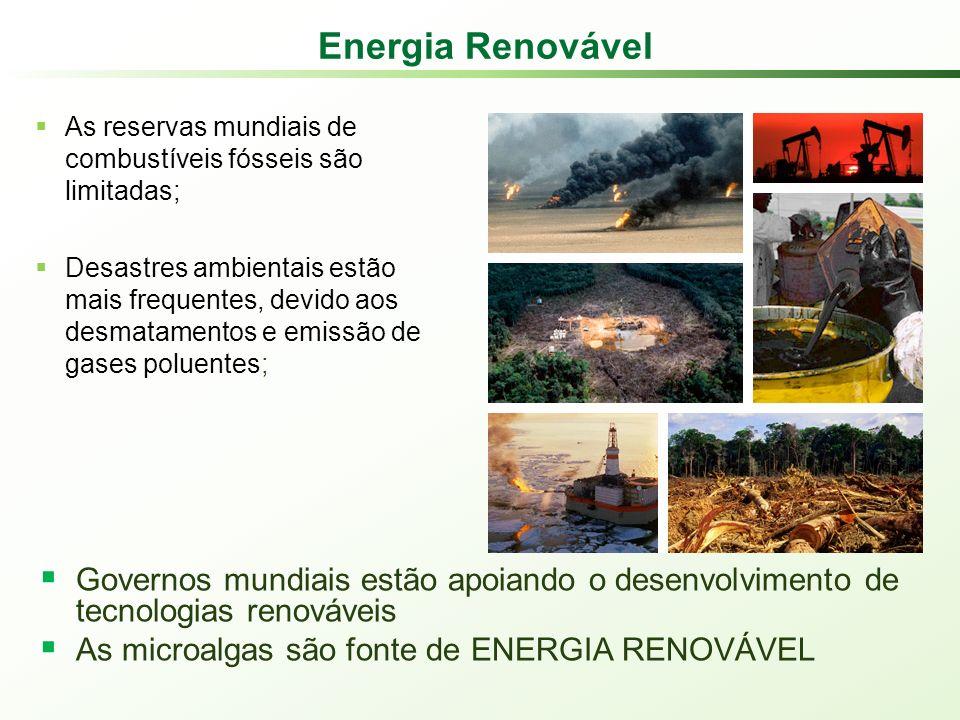 Governos mundiais estão apoiando o desenvolvimento de tecnologias renováveis As microalgas são fonte de ENERGIA RENOVÁVEL Energia Renovável As reservas mundiais de combustíveis fósseis são limitadas; Desastres ambientais estão mais frequentes, devido aos desmatamentos e emissão de gases poluentes;