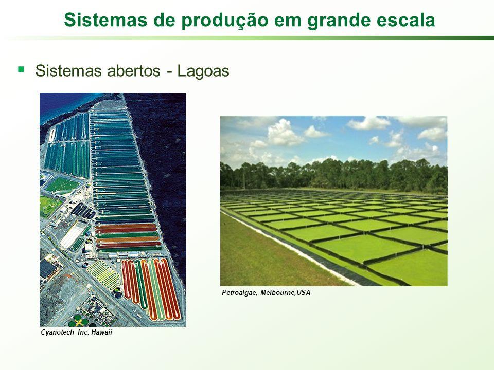 Sistemas de produção em grande escala Sistemas abertos - Lagoas Cyanotech Inc.