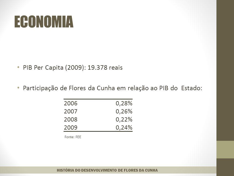ECONOMIA PIB Per Capita (2009): 19.378 reais Participação de Flores da Cunha em relação ao PIB do Estado: Fonte: FEE HISTÓRIA DO DESENVOLVIMENTO DE FLORES DA CUNHA 20060,28% 20070,26% 20080,22% 20090,24%
