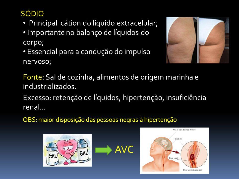 SÓDIO Principal cátion do líquido extracelular; Importante no balanço de líquidos do corpo; Essencial para a condução do impulso nervoso; Fonte: Sal d