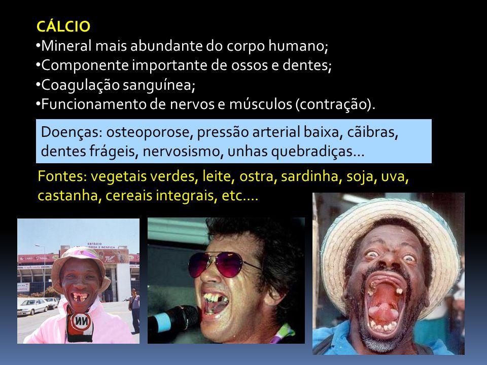 CÁLCIO Mineral mais abundante do corpo humano; Componente importante de ossos e dentes; Coagulação sanguínea; Funcionamento de nervos e músculos (cont