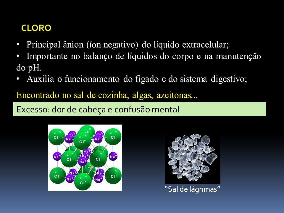 CLORO Principal ânion ( í on negativo) do l í quido extracelular; Importante no balan ç o de l í quidos do corpo e na manuten ç ão do pH. Auxilia o fu