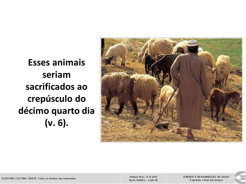 Esses animais seriam sacrificados ao crepúsculo do décimo quarto dia (v. 6). © EDITORA CULTURA CRISTÃ. Todos os direitos são reservados. Palavra Viva