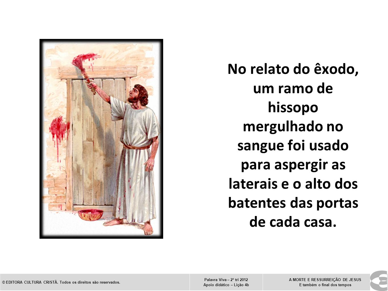 No relato do êxodo, um ramo de hissopo mergulhado no sangue foi usado para aspergir as laterais e o alto dos batentes das portas de cada casa. © EDITO