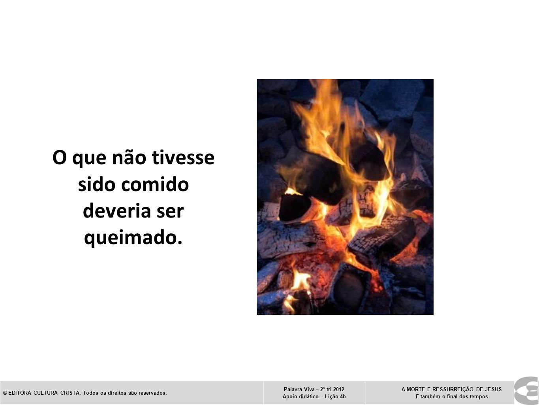 O que não tivesse sido comido deveria ser queimado. © EDITORA CULTURA CRISTÃ. Todos os direitos são reservados. Palavra Viva – 2º tri 2012 Apoio didát