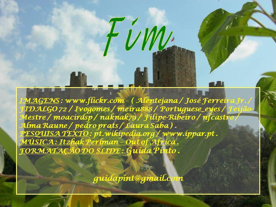 Na segunda metade do século XIX, o Castelo foi entregue ao Exército português, a que está afecto até aos nossos dias.