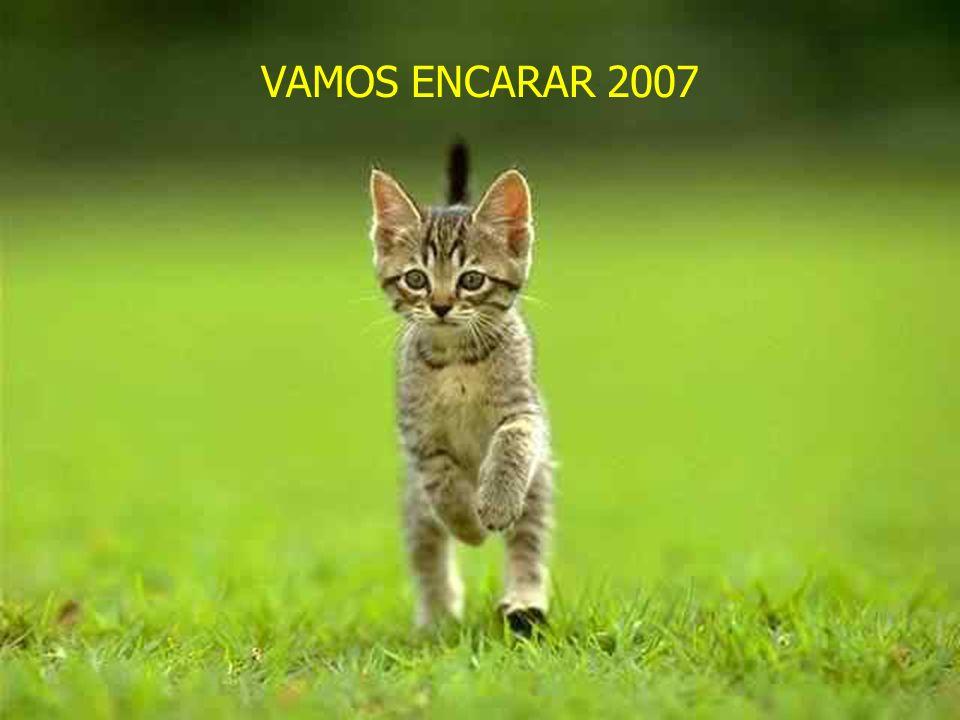 VAMOS ENCARAR 2007