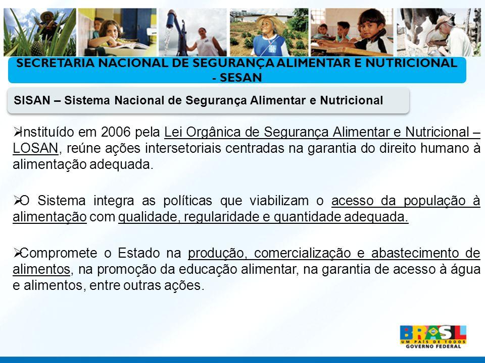 Ministério do Desenvolvimento Social e Combate à Fome SISAN – Sistema Nacional de Segurança Alimentar e Nutricional Instituído em 2006 pela Lei Orgâni