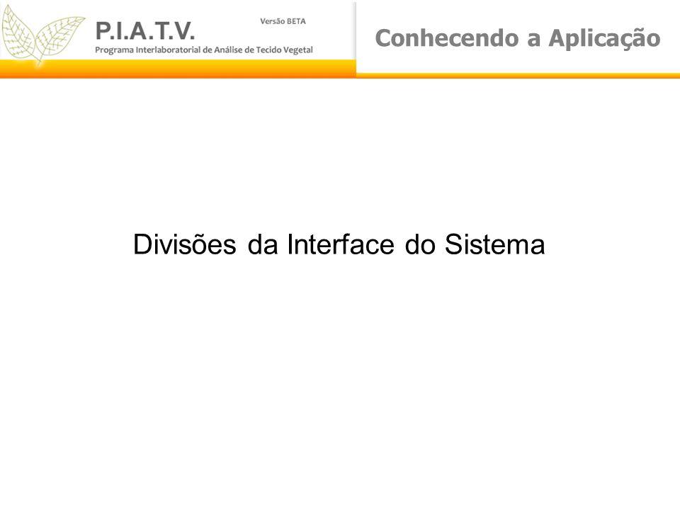 Conhecendo a Aplicação Divisões da Interface do Sistema