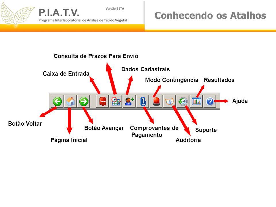 Conhecendo os Atalhos Botão Voltar Página Inicial Botão Avançar Consulta de Prazos Para Envio Caixa de Entrada Dados Cadastrais Comprovantes de Pagame