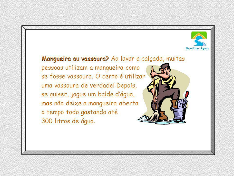 Luannarj@uol.com.br Brasil das Águas Mangueira ou vassoura.