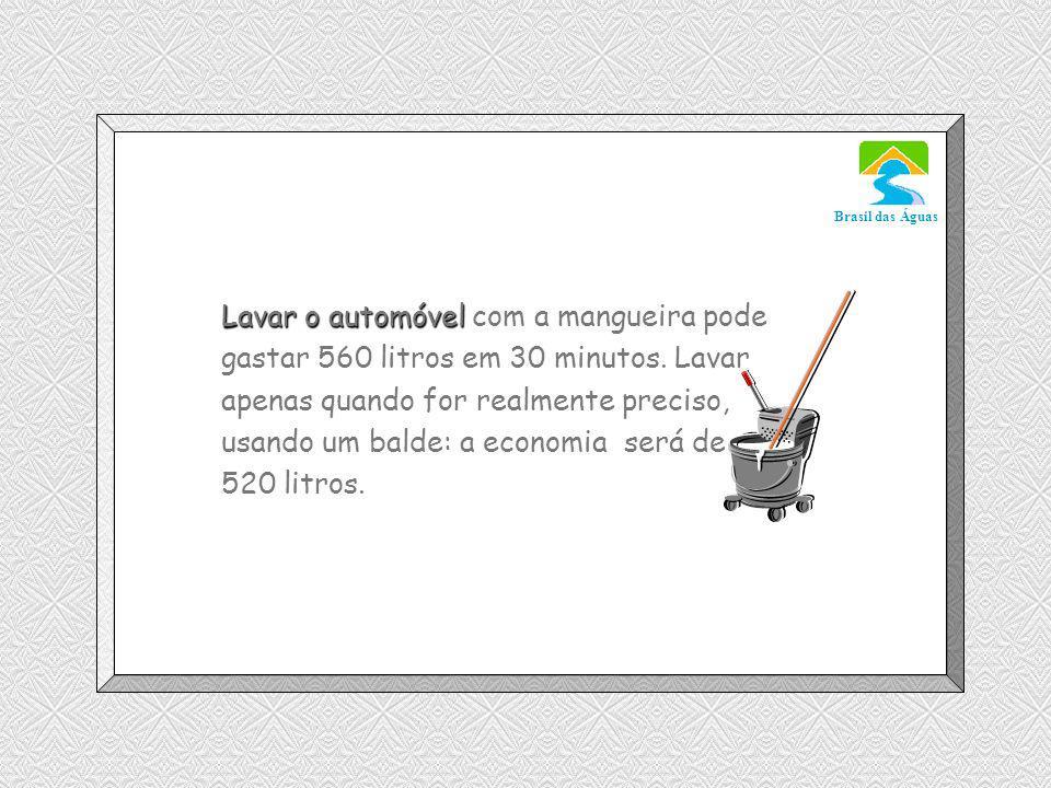 Luannarj@uol.com.br Brasil das Águas Lavar o automóvel Lavar o automóvel com a mangueira pode gastar 560 litros em 30 minutos.