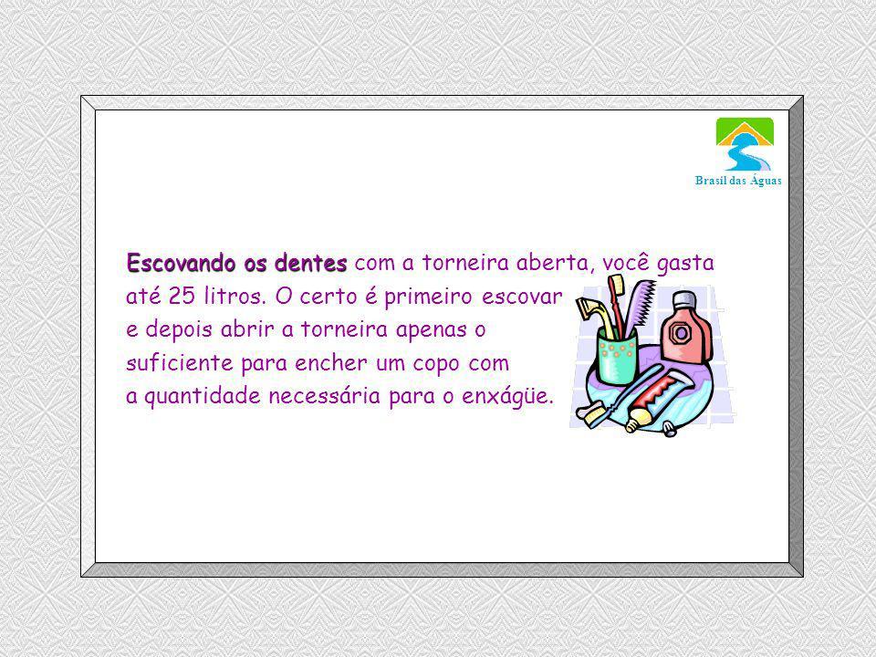 Luannarj@uol.com.br Brasil das Águas Escovando os dentes Escovando os dentes com a torneira aberta, você gasta até 25 litros.
