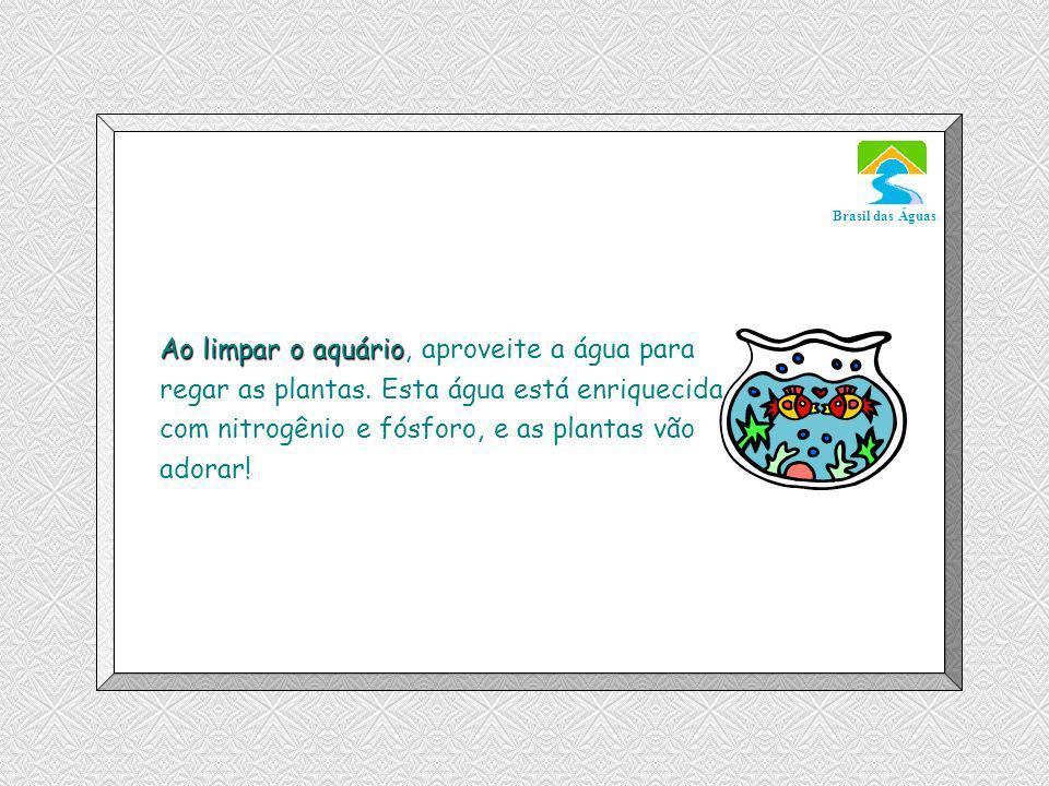 Luannarj@uol.com.br Brasil das Águas Ao limpar o aquário Ao limpar o aquário, aproveite a água para regar as plantas.
