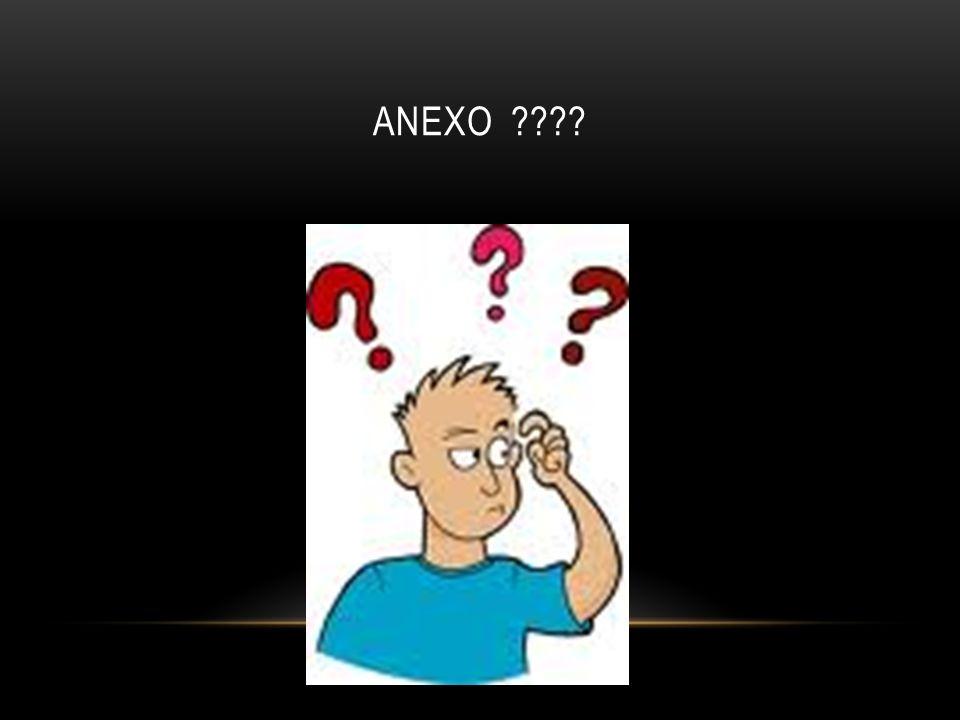 ANEXO ????