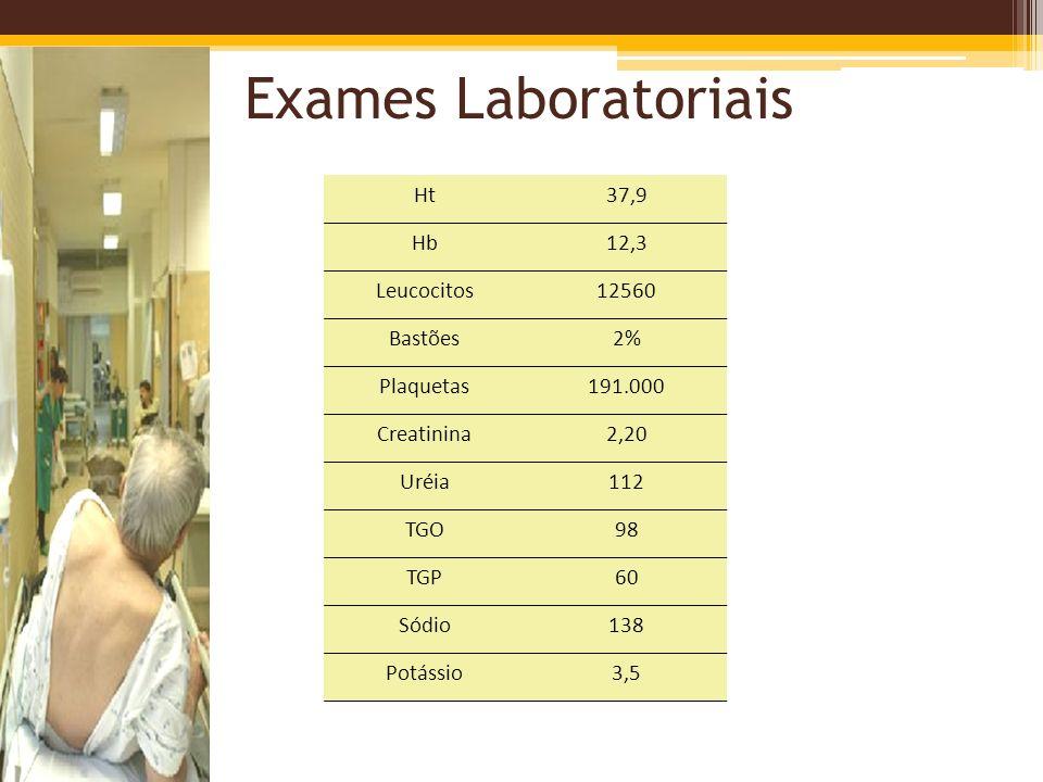 Exames Laboratoriais Ht37,9 Hb12,3 Leucocitos12560 Bastões2% Plaquetas191.000 Creatinina2,20 Uréia112 TGO98 TGP60 Sódio138 Potássio3,5