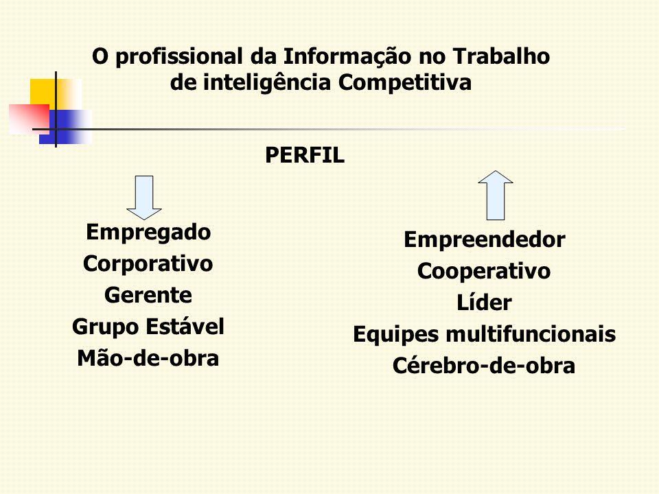 O profissional da Informação no Trabalho de inteligência Competitiva PERFIL Empregado Corporativo Gerente Grupo Estável Mão-de-obra Empreendedor Coope