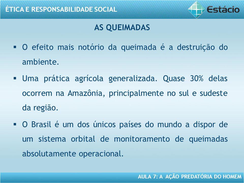 ÉTICA E RESPONSABILIDADE SOCIAL AULA 7: A AÇÃO PREDATÓRIA DO HOMEM O efeito mais notório da queimada é a destruição do ambiente. Uma prática agrícola