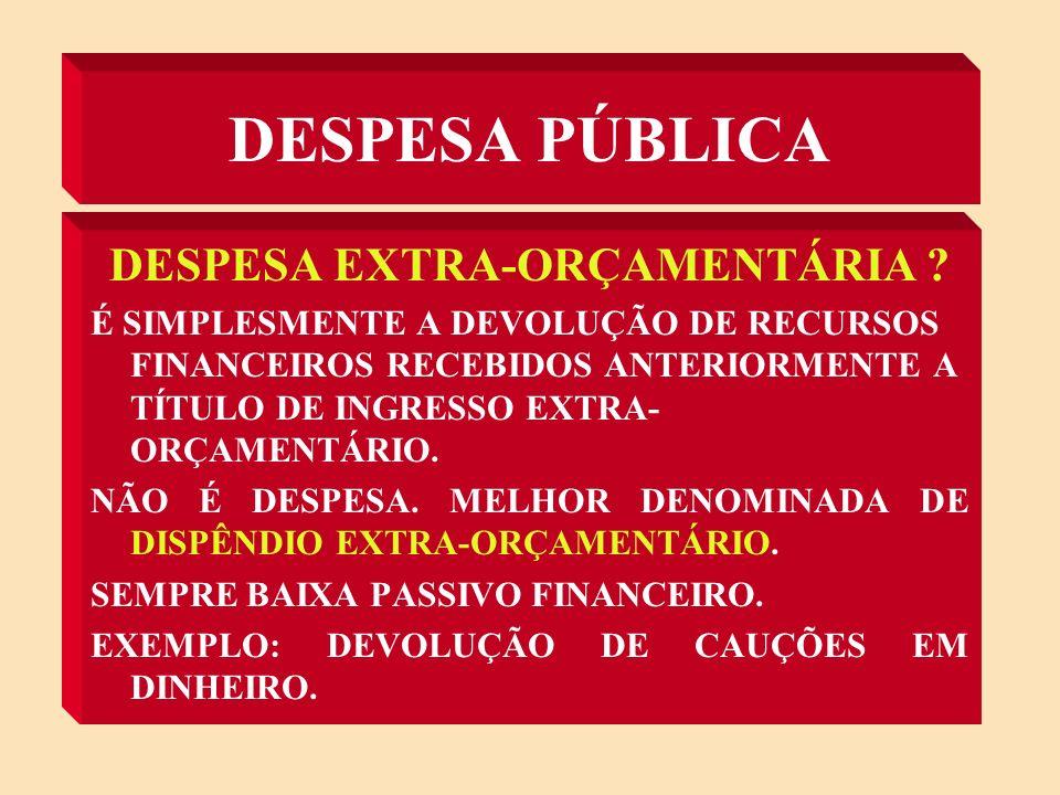 DESPESA PÚBLICA DESPESA ORÇAMENTÁRIA .