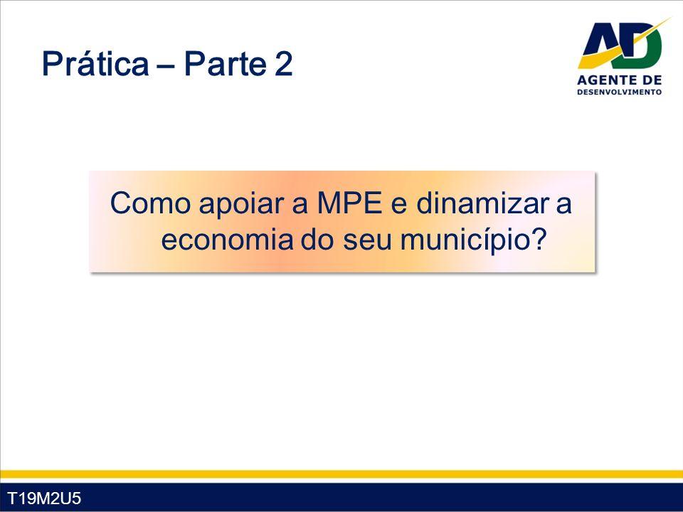 T19M2U5 Prática – Parte 2 Como apoiar a MPE e dinamizar a economia do seu município?