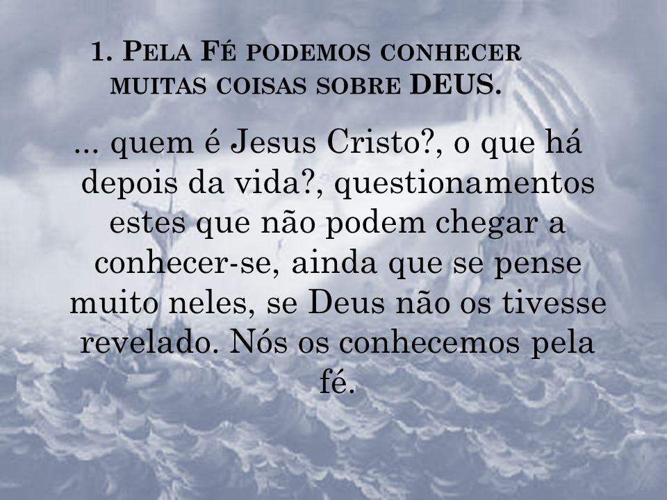 TER F É é aceitar o projeto de Deus (abertura à Vontade...) TER F É é acolher Jesus...