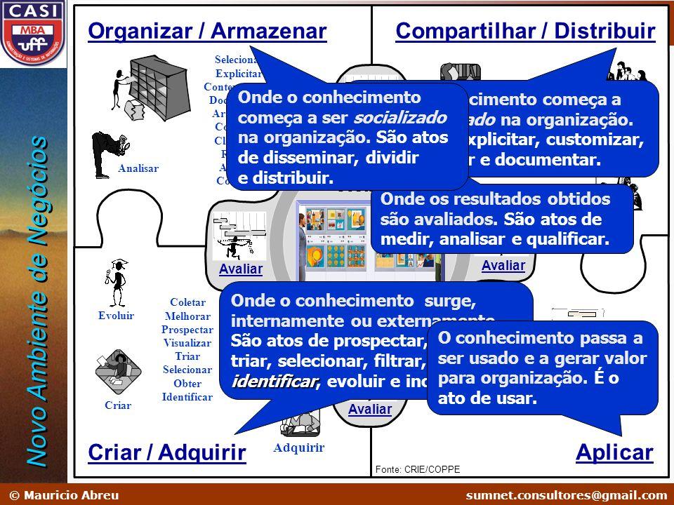 sumnet@microlink.com.br © Mauricio Abreusumnet.consultores@gmail.com Administração em Sistemas de Informação Soluções na Era do Conhecimento Criar Evo