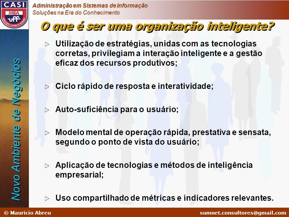 sumnet@microlink.com.br © Mauricio Abreusumnet.consultores@gmail.com Administração em Sistemas de Informação Soluções na Era do Conhecimento Utilizaçã
