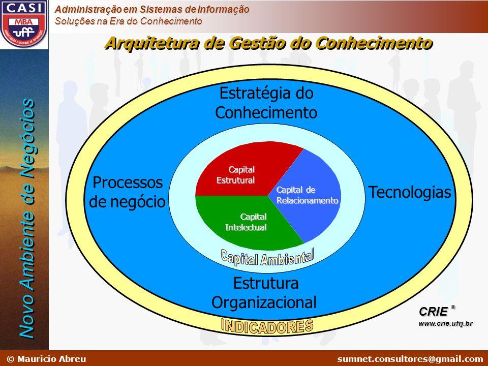 sumnet@microlink.com.br © Mauricio Abreusumnet.consultores@gmail.com Administração em Sistemas de Informação Soluções na Era do Conhecimento Estratégi
