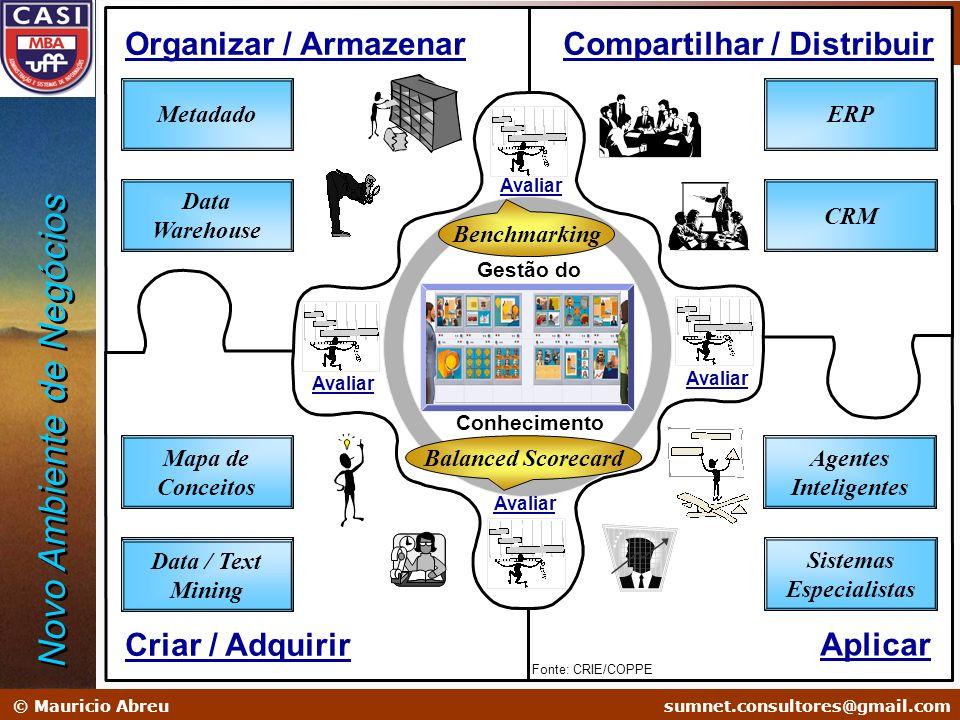 sumnet@microlink.com.br © Mauricio Abreusumnet.consultores@gmail.com Administração em Sistemas de Informação Soluções na Era do Conhecimento Gestão do