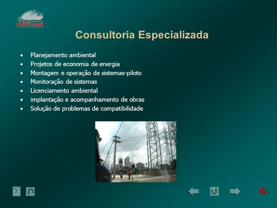Principais Projetos Projeto EMF-SP: Projeto na área de energia (60Hz), aprovado pela ANEEL, envolvendo as concessionárias de energia: ELETROPAULO, CTEP, ELEKTRO, BANDEIRANTE E CPFL.