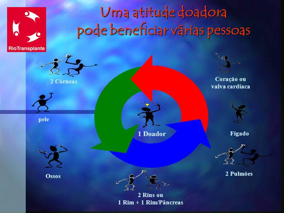 Uma atitude doadora pode beneficiar várias pessoas 2 Córneas pele Ossos 2 Rins ou 1 Rim + 1 Rim/Pâncreas 2 Pulmões Fígado Coração ou valva cardíaca 1