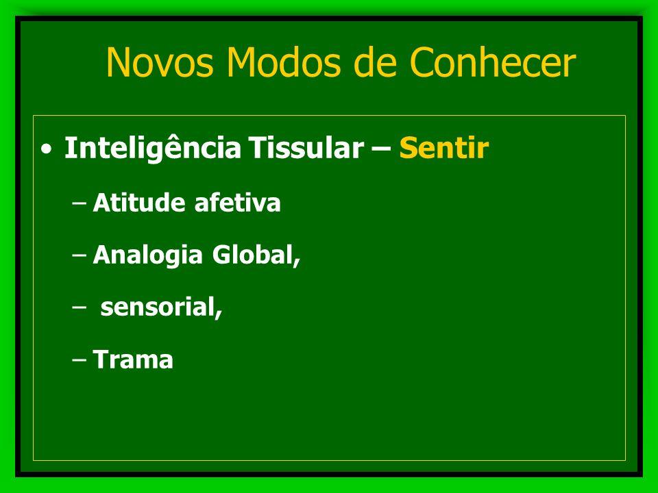Novos Modos de Conhecer Inteligência Geométrica - Compreender –Atitude especulativa –Análise e síntese - abstração –Conceitual, formal, simbólica –Enc