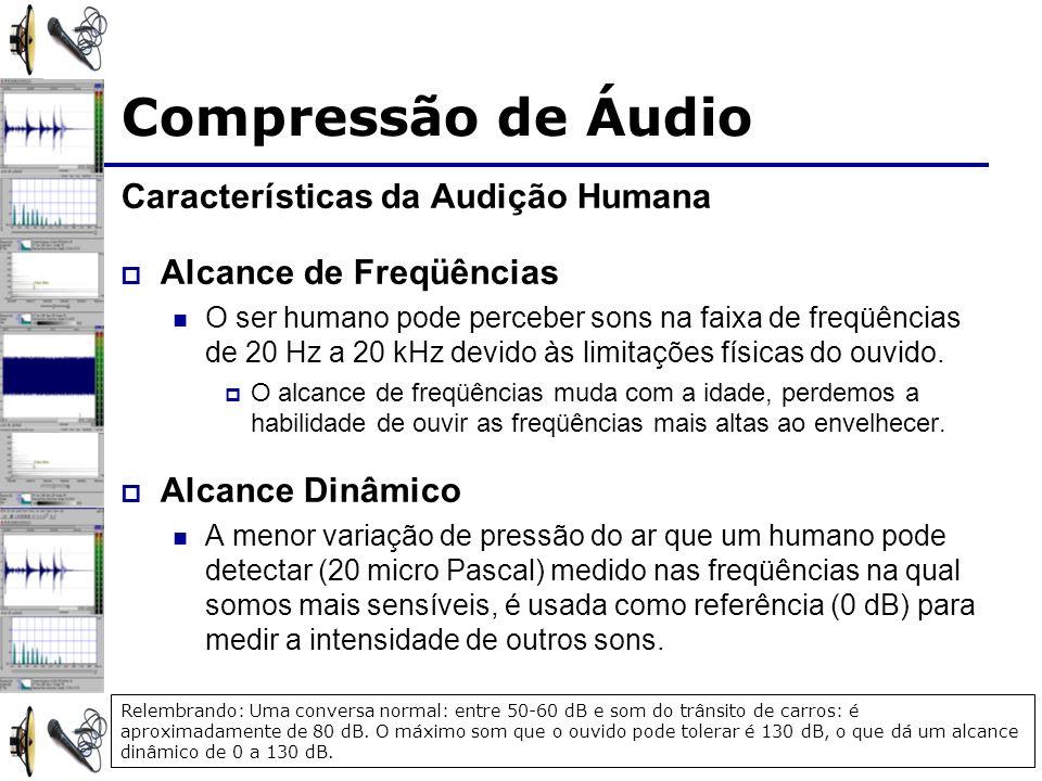 Características da Audição Humana Alcance de Freqüências O ser humano pode perceber sons na faixa de freqüências de 20 Hz a 20 kHz devido às limitaçõe