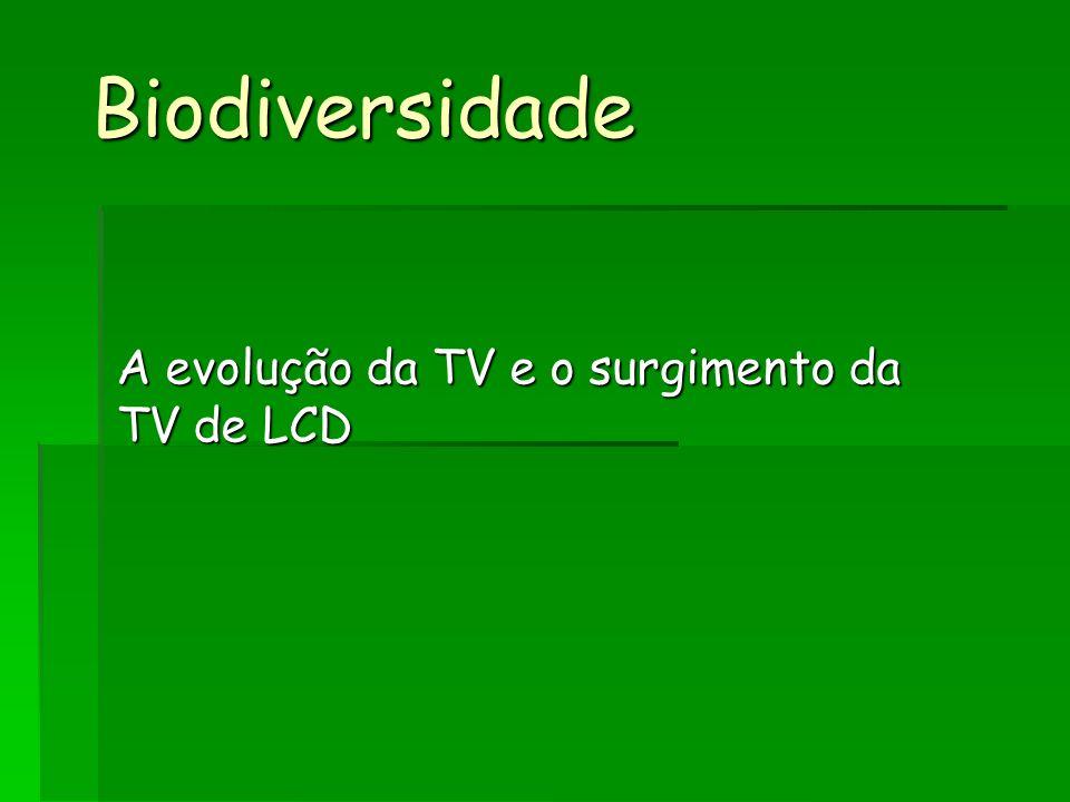 Biodiversidade A evolução da TV e o surgimento da TV de LCD