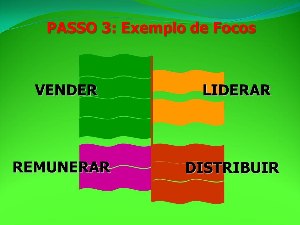 LIDERARVENDER REMUNERAR DISTRIBUIR PASSO 3: Exemplo de Focos