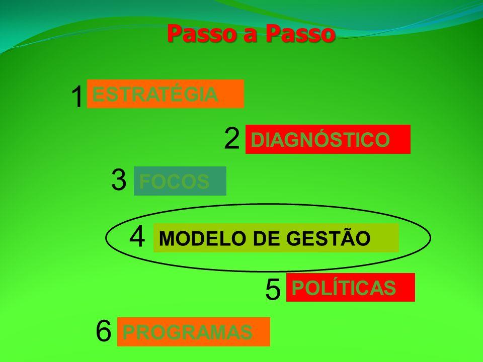 ESTRATÉGIA 1 DIAGNÓSTICO 2 FOCOS 3 MODELO DE GESTÃO 4 PROGRAMAS 6 POLÍTICAS 5 Passo a Passo