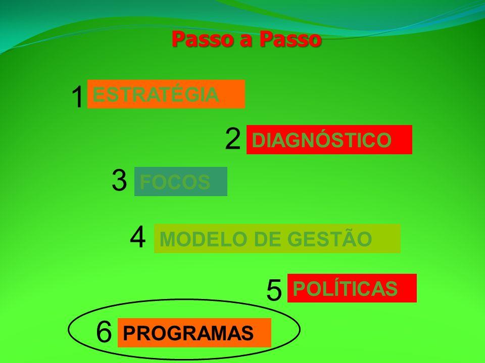 Passo a Passo ESTRATÉGIA 1 DIAGNÓSTICO 2 FOCOS 3 MODELO DE GESTÃO 4 PROGRAMAS 6 POLÍTICAS 5