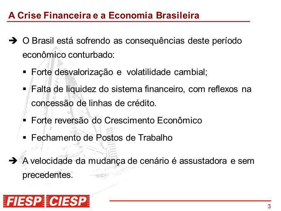 3 A Crise Financeira e a Economia Brasileira O Brasil está sofrendo as consequências deste período econômico conturbado: Forte desvalorização e volati