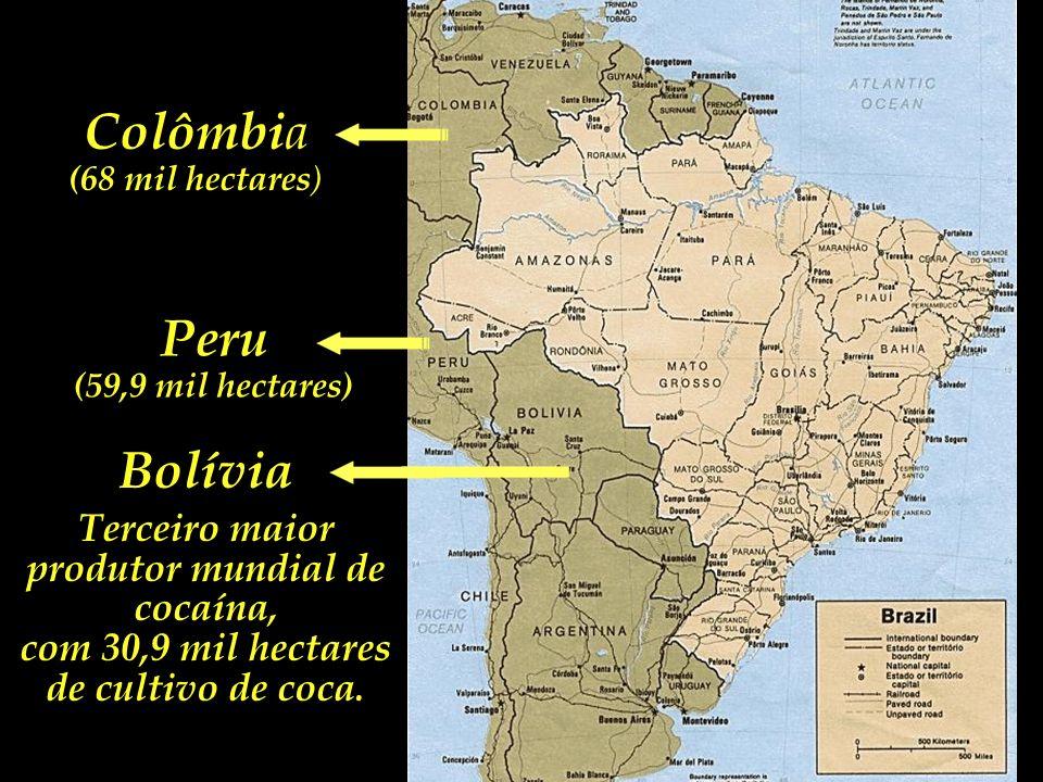 Colômbia Peru Segundo maior produtor de cocaína, com 59,9 mil hectares. Seguida a tendência atual, deverá superar a Colômbia nos próximos anos. (68 mi