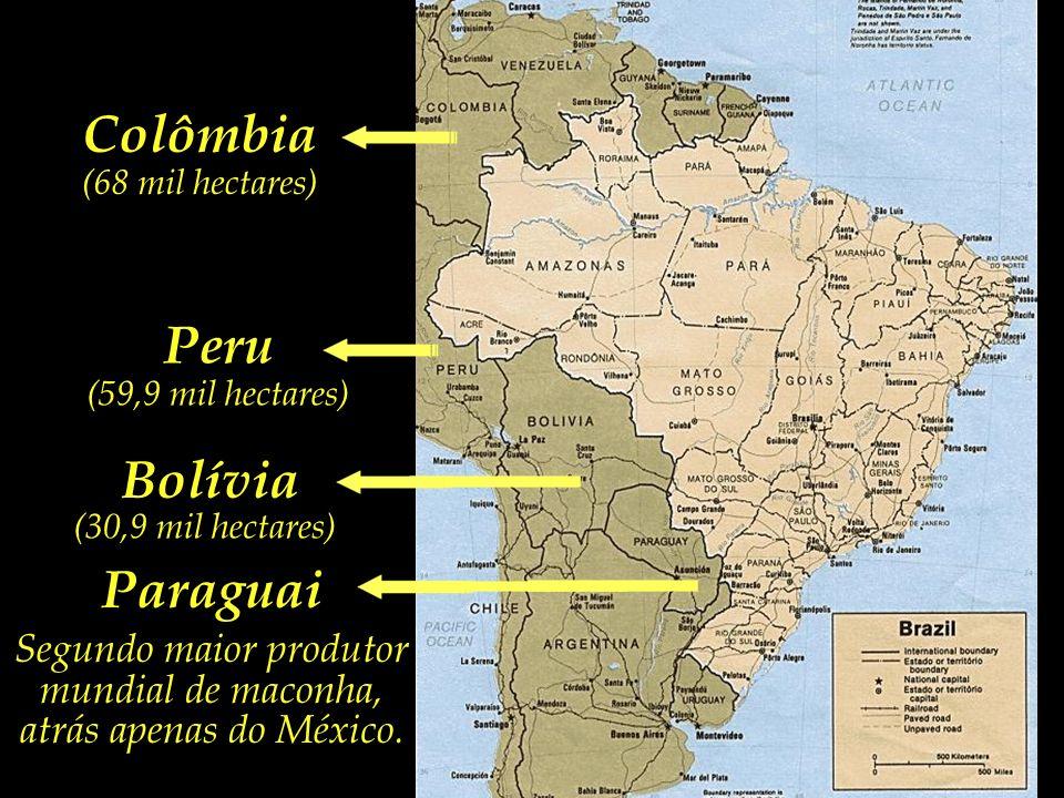 Colômbi a (68 mil hectares ) Peru (59,9 mil hectares) Bolívia Terceiro maior produtor mundial de cocaína, com 30,9 mil hectares de cultivo de coca.