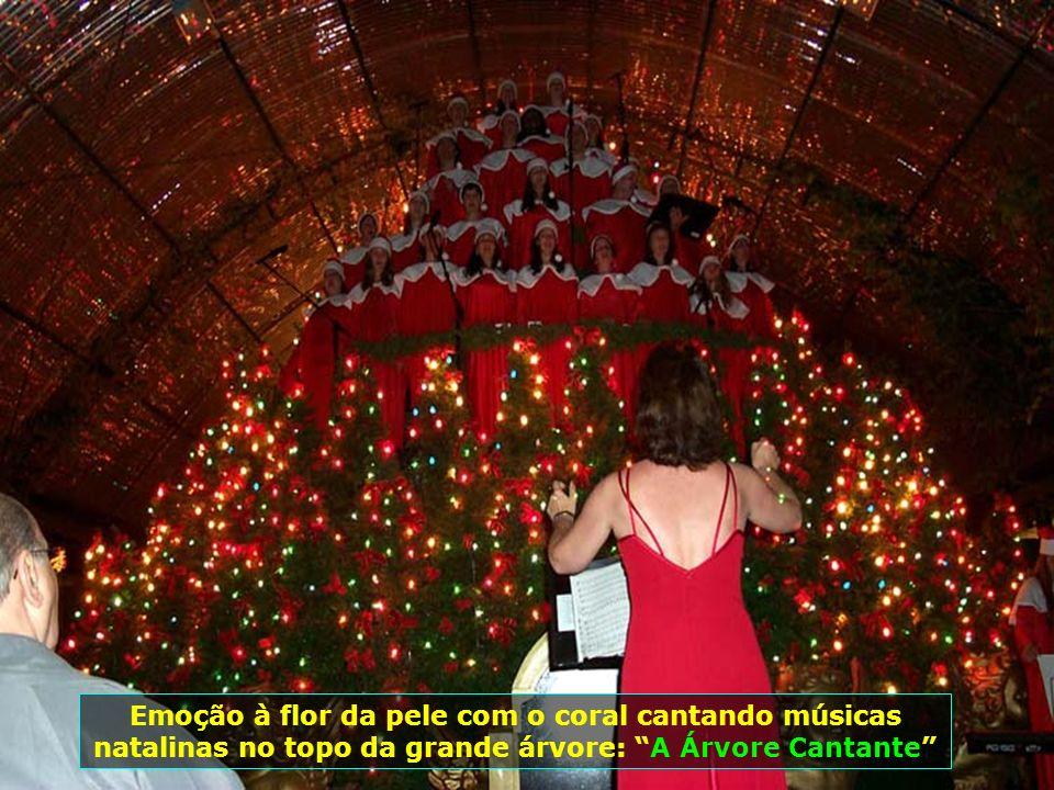 A beleza da apresentação da Árvore Cantante na rua coberta, centro de Gramado...