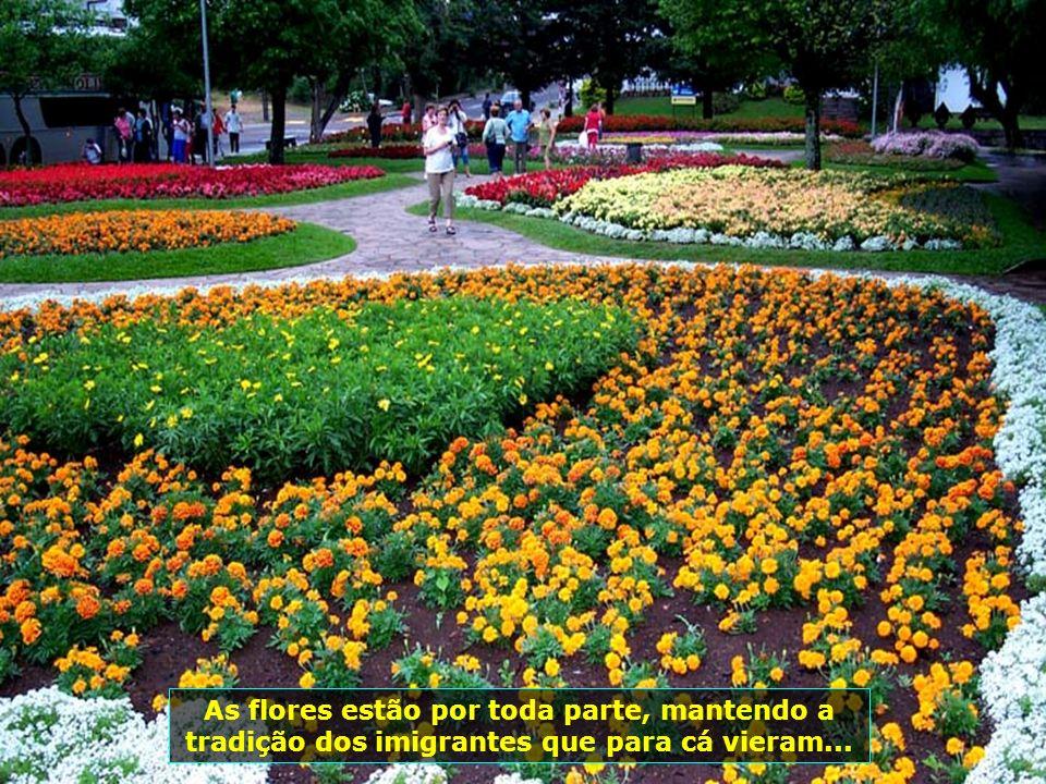 Pertinho de Gramado, a beleza dos jardins de Nova Petrópolis, uma comunidade inteira dedicada a zelar pelas belas flores da cidade...