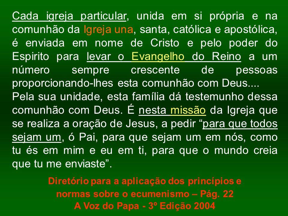 Cada igreja particular, unida em si própria e na comunhão da Igreja una, santa, católica e apostólica, é enviada em nome de Cristo e pelo poder do Esp