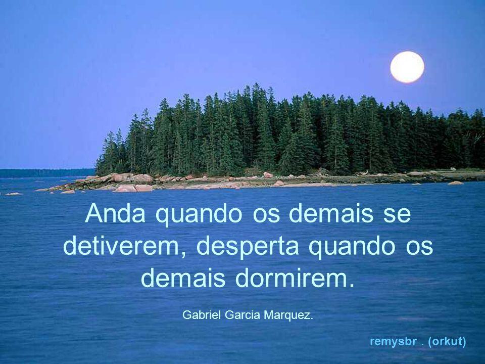 Durma pouco para não perder a luz do dia e da noite mas, sonha mais, acordado (a). remysbr. (orkut)