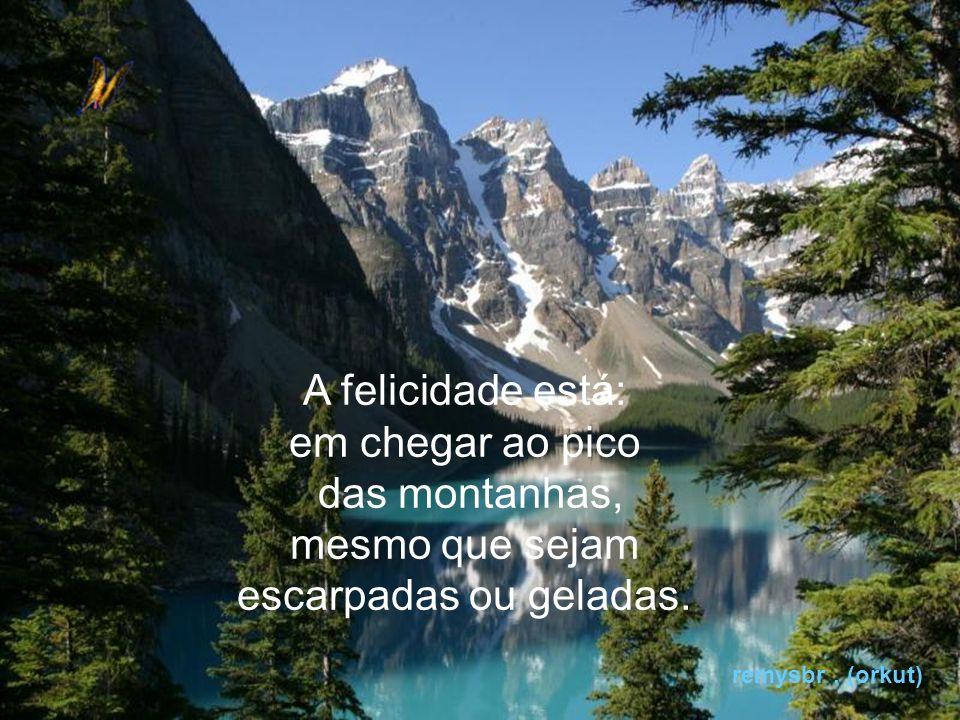A felicidade está: em chegar ao pico das montanhas, mesmo que sejam escarpadas ou geladas.