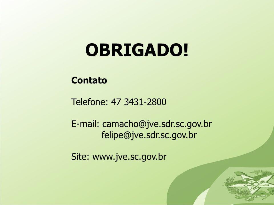 OBRIGADO! Contato Telefone: 47 3431-2800 E-mail: camacho@jve.sdr.sc.gov.br felipe@jve.sdr.sc.gov.br Site: www.jve.sc.gov.br