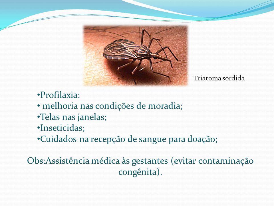 Profilaxia: melhoria nas condições de moradia; Telas nas janelas; Inseticidas; Cuidados na recepção de sangue para doação; Obs:Assistência médica às g
