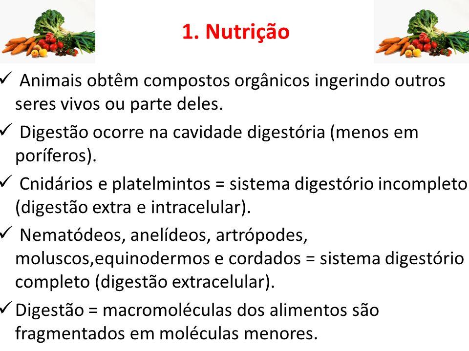 1.Nutrição Animais obtêm compostos orgânicos ingerindo outros seres vivos ou parte deles.