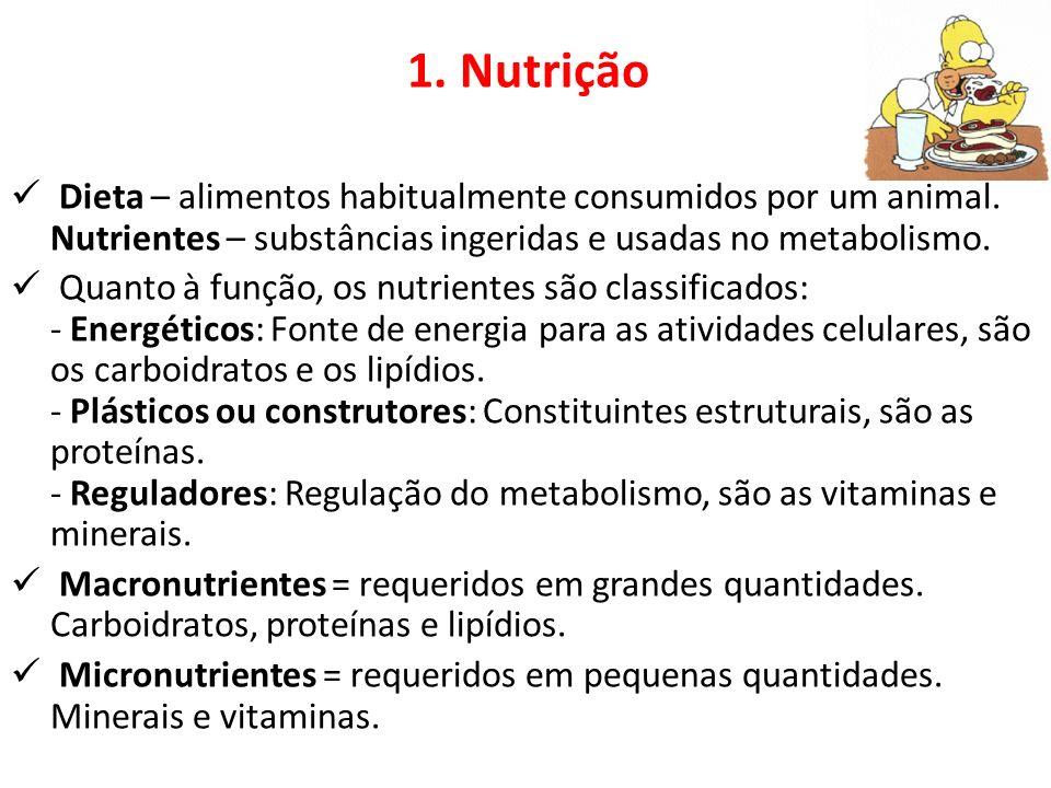 Dieta – alimentos habitualmente consumidos por um animal.