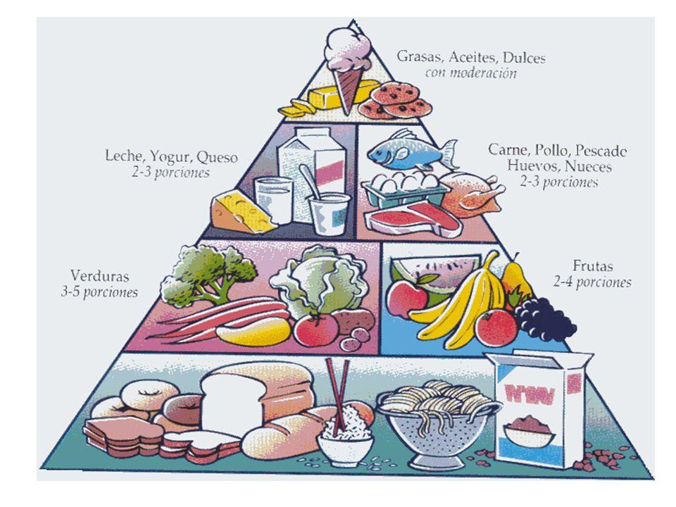 Vitaminas Necessárias em pequenas doses, são essenciais nos processos metabólicos.